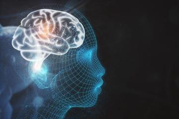 Scientific picture of Parasympathetic Nervous System