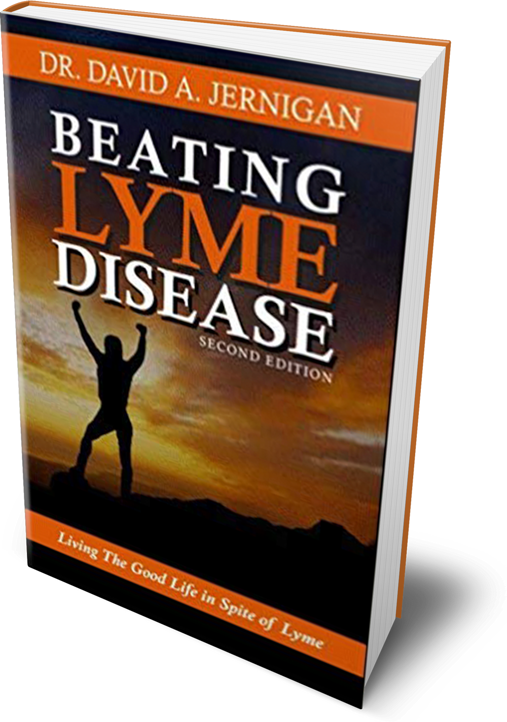 Beating Lyme Disease, 2nd Edition